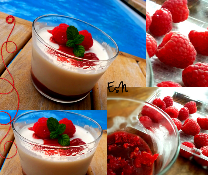 recette facile de panna cotta aux fruits rouges. Black Bedroom Furniture Sets. Home Design Ideas